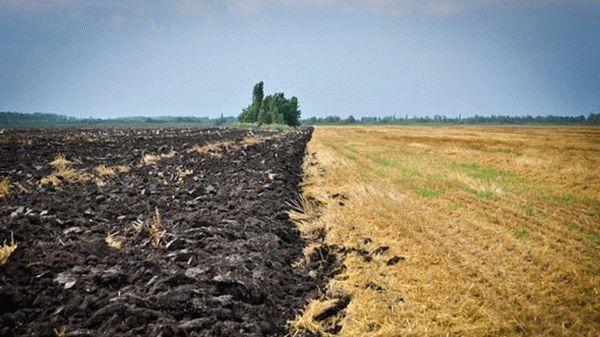 Всё об использовании земель не по целевому назначению